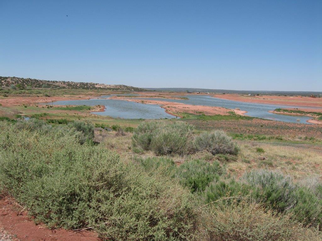Zuni Wetlands Ponds-  Cells 5,6,& 7